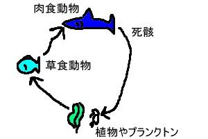 syokumoturennsa01.jpg
